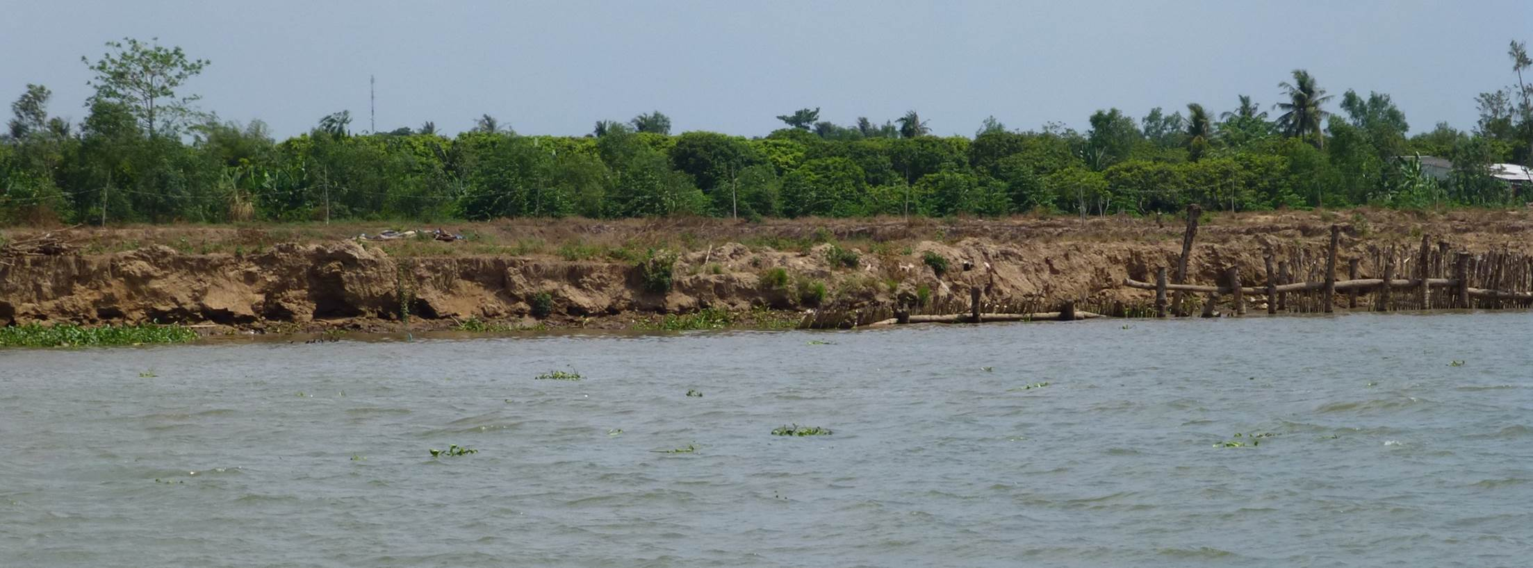 Icem River Bank Protection In The Mekong Delta