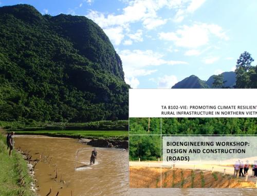 Bioengineering Workshop: Design and Construction (Roads)