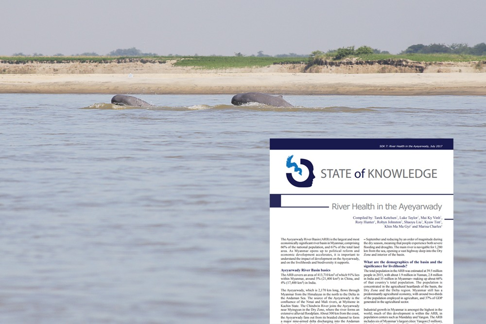 State of Knowledge papers: River health in the Salween and Ayeyarwady