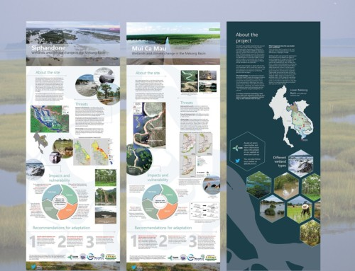 POSTER SERIES: Wetlands in the Lower Mekong Basin