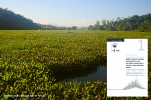 Climate change assessment for wetland biodiversity guideline