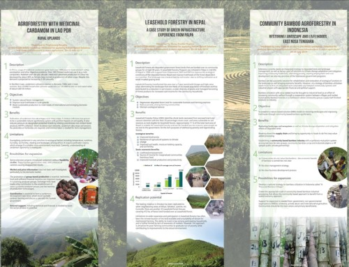 POSTER SERIES: Case studies of Nature-Based Solutions in Asia's agricultural sector